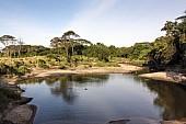 Serengeti Scenic