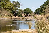 River scene, Kruger National Park